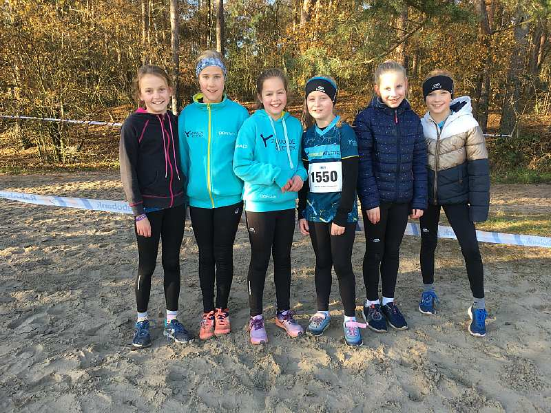 Start Crosscup AV-Zeewolde 2019