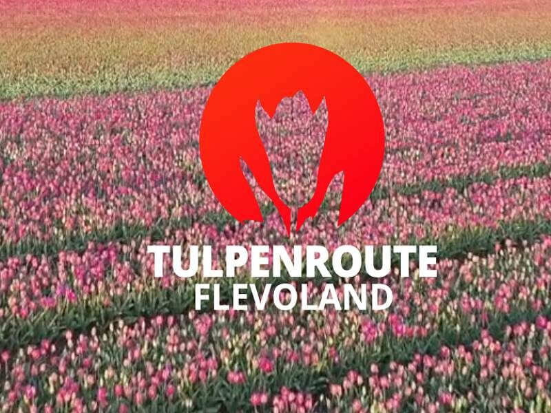 Tulpenroute 2021